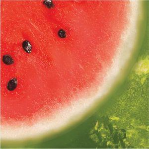 18 kleine Servietten Wassermelone