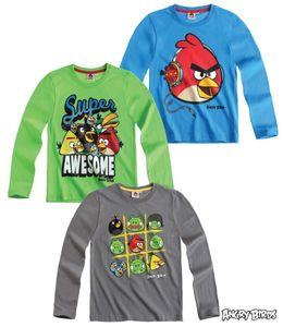 Angry Birds Langarm Shirt in Grau