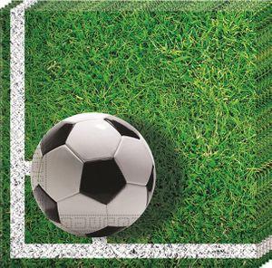 20 Servietten Fußball Stadionrasen – Bild 1