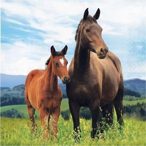 16 Servietten Wilde Pferde – Bild 1