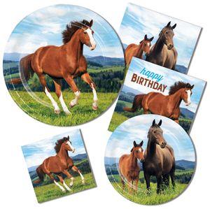 Geburtstags Girlande am Zwirn Wilde Pferde – Bild 2